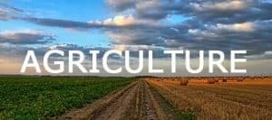 AGRILULTURE