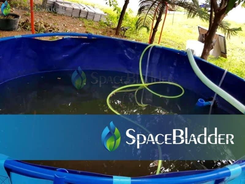 2000l backyard pvc tarpauline fish farming tank custom feedback 1