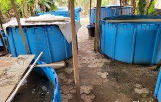 2000l backyard pvc tarpauline fish farming tank custom feedback