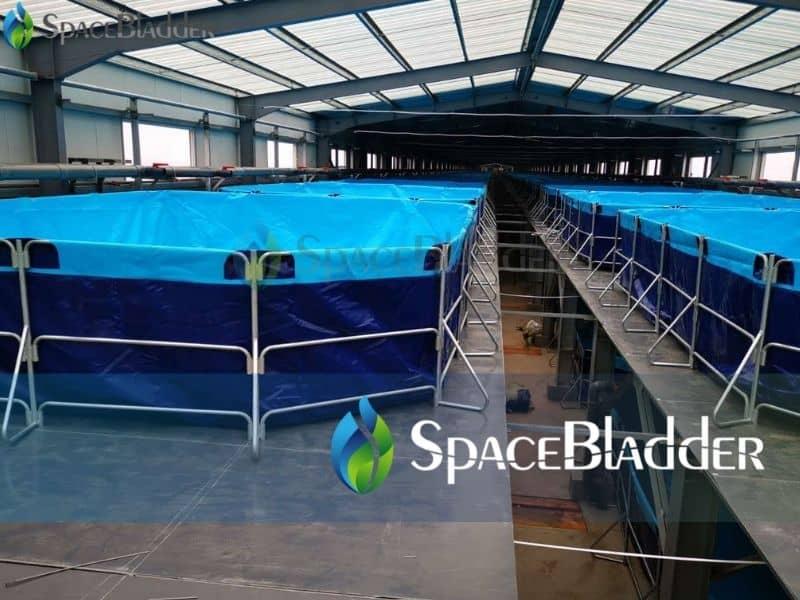 rectangular folding tanks for aquaculture system shrimp tanks 4